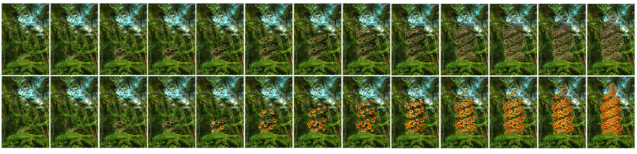 3-21 topiary sequence study flowers copy